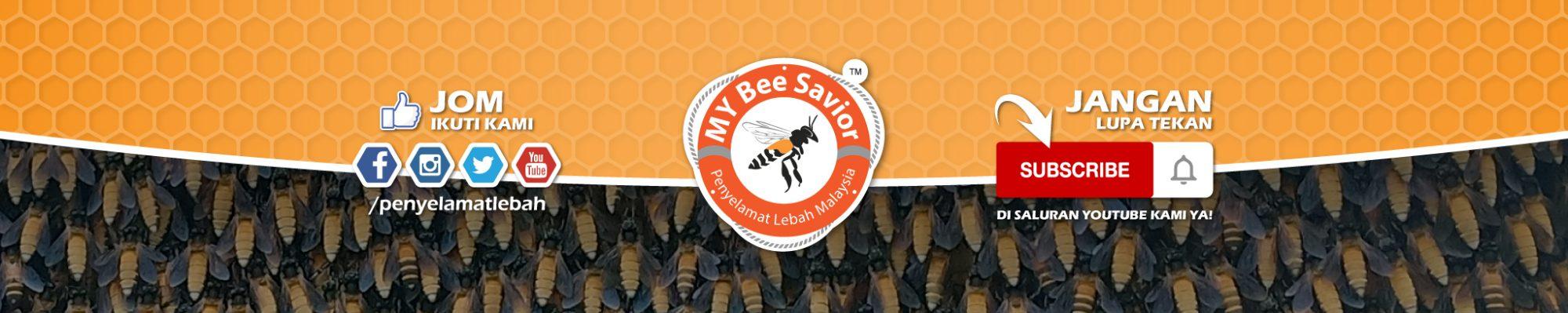 Penyelamat Lebah Malaysia – MY Bee Savior